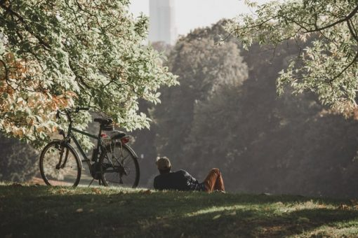 Perceived Health Impact and Usage of Public Green Spaces in Brussels' Metropolitan Area During the COVID-19 Epidemic